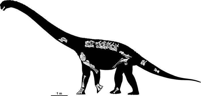 jlb-savannasaurus