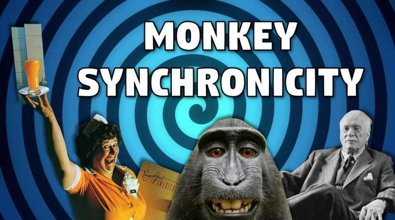 monkey-sync-thumb