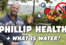 Phillip Health + What is Water?