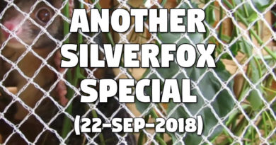 Another Silverfox Special