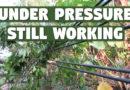 Under Pressure – Still Working