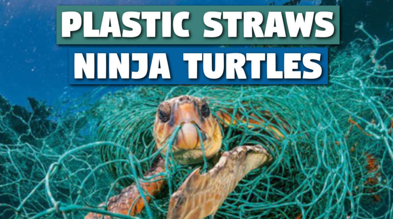 Plastic Straws vs Ninja Turtles