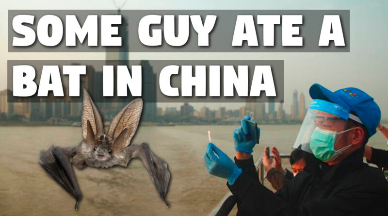 Some Guy Ate a Bat in China