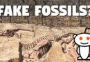 Reddit Fake Fossils